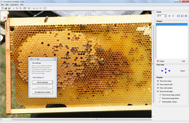 Automatic Image Adjustment (supported by HoneybeeComplete, Honeybee Brood Logger, IndiCounter). Images are automatically aligned by the software. Hence even free-hand photos can be used without the need to purchase a special foto-box.