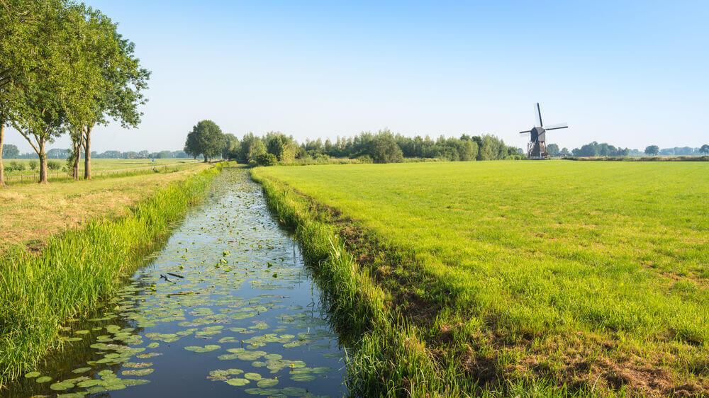 Regulatory support agrochemicals